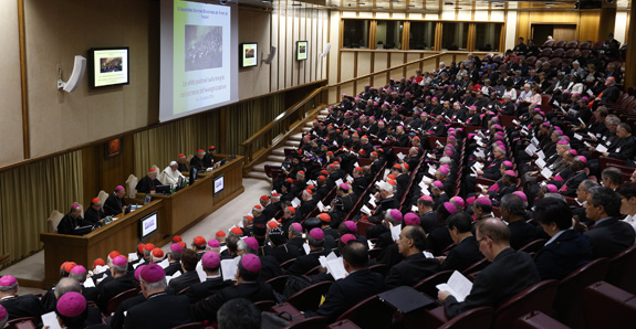 Pray For The Bishops At The Synod